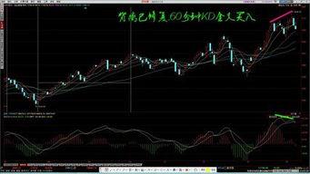 创业版股票分析