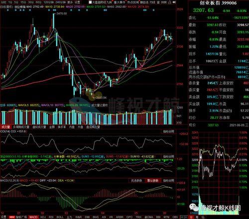 六月股票分析