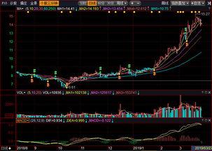 中材科技股票怎么样