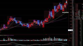 怎样看这些哪些是日线和年线?股票