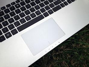 笔记本如何禁用触摸板?