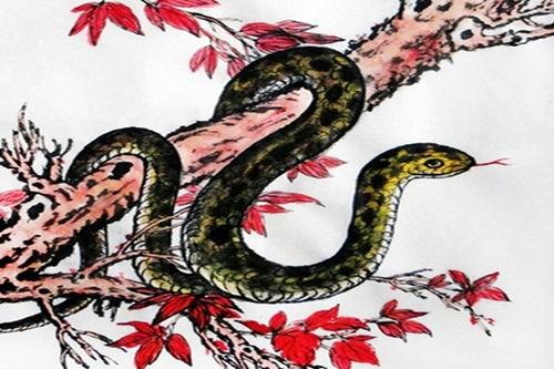 2020年属蛇人的财运怎样(属蛇,女,一九七七年生,农历六月二十一生,今年