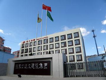 中国远大集团有哪些医药企业