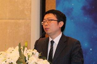 股票分析师陈奇