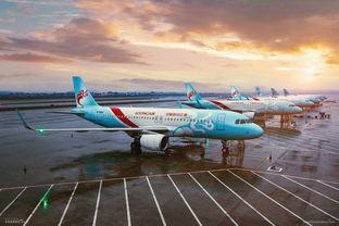 长龙航空是上市公司吗?