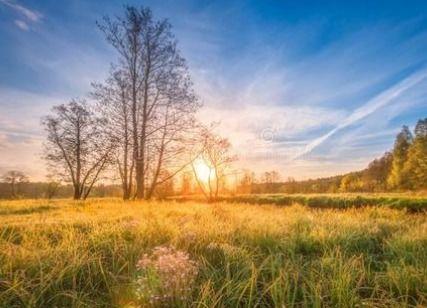 关于自然景观的古诗句