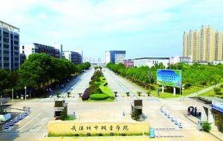 武汉城市职业学院有哪些专业吗