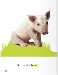 少儿英语学单词一年级 第3课 小猪坐下 Sit, Pig