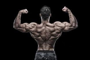 做不了引体向上这几个动作同样可以练爆你的背部肌肉