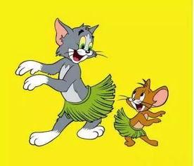 猫和老鼠官网(猫和老鼠官方手游安卓)