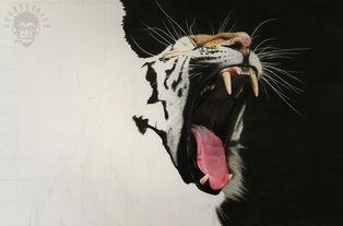 MZ彩铅手绘作品 虎I