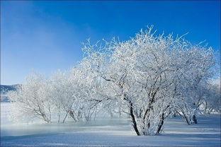 关于冬天写景的诗句四级