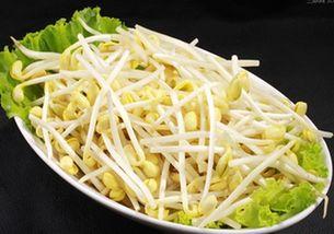 黄豆芽发绿能吃吗(黄豆芽变绿能吃吗?)