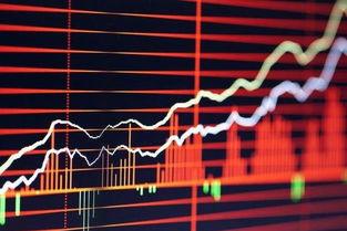 谁能推荐一个好的股票交流群?希望没有发广告的!!!