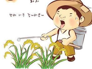 猪年的农业谚语
