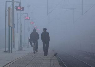 印度首都空气噩耗持续,效仿中国洒水喷雾除霾结果却弄巧成拙