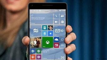 微软将推超廉价windows10手机