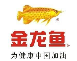 金龙鱼多少钱一条(金龙鱼多少钱一条?)
