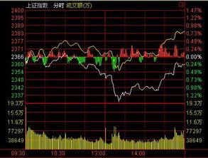 保险股票常见的有哪些,龙头股是哪支 / 股票