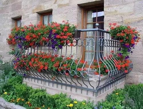 吊起来养花哪种花盆