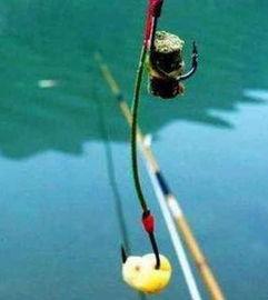 钓鱼除了蚯蚓还可以用什么钓