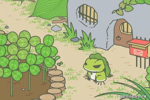 旅行青蛙将拍国产动画电影,还记得呱儿子叫什么名字吗