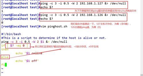 shell脚本条件判断语句