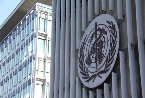 世卫组织:不会提高新冠肺炎疫情全球风险级别