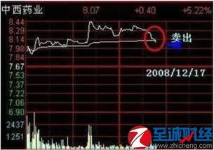 股票出现t点是什么意思?
