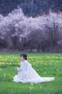 李子柒的菜园里,藏着花艺师向往的生活
