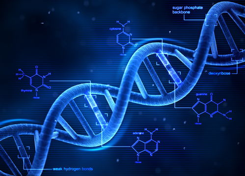 基因编辑重新设置限制,基因疗法会受影响吗