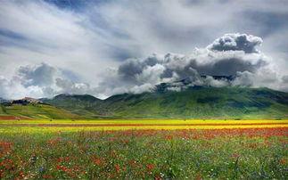 乡村自然风光田园风景照片朴素和谐令人向往