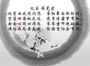 红楼梦中关于写完菊花的诗句