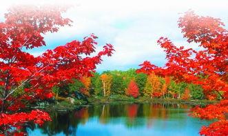 形容庐山秋天的诗句