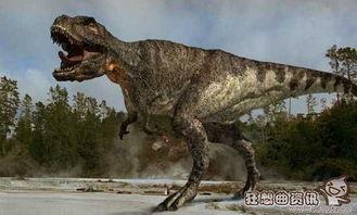 霸王龙的天敌是什么龙 恐龙灭绝后谁称霸了地球