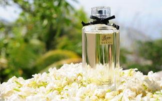 高清品牌香水唯美图片桌面壁纸第一辑高清大图预览1920 1200 广告壁纸下载