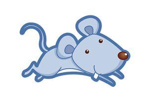 鼠人今日时辰运势(生肖鼠今日运势)