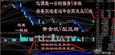 怎么基本面分析一只股票