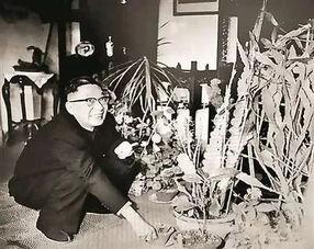 老舍养花是什么类型的文章