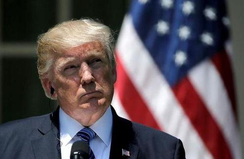 表情13亿美元边境安全拨款特朗普坚决不签字糖糖论天下表情