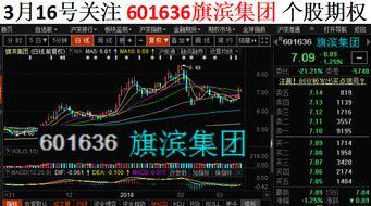 为什么旗滨集团股票从12多一下跌到四块多呢?