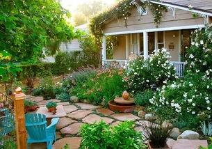 庭院除了养花还能