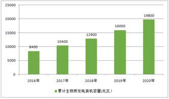 中国生物质发电投资