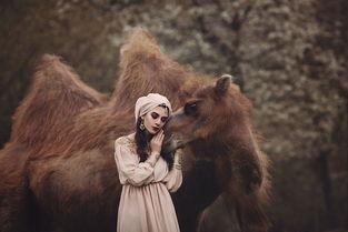 人与动物的羁绊