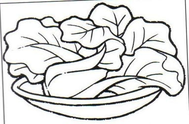 白菜的简笔画怎么画?怎么画白菜?