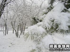 大雪纷飞打一成语