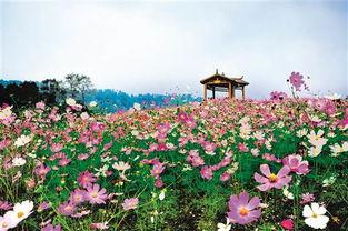 东温泉天体浴场