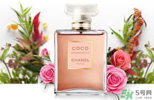 香奈儿黑coco香水和白coco香水哪个好 香奈儿黑可可和白可可选择