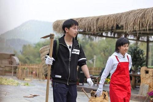 张子枫搭档彭昱畅加盟向往的生活成常驻嘉宾