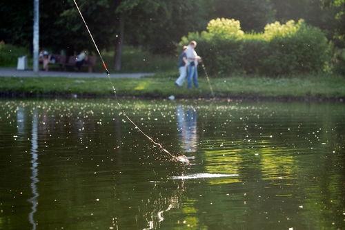 10度下雨可以钓鱼吗